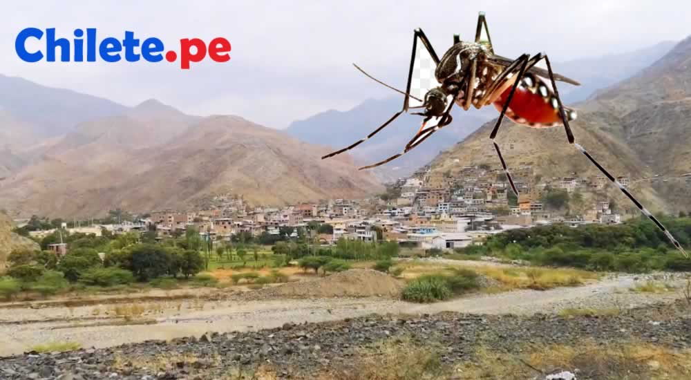chilete-lucha-contra-el-dengue